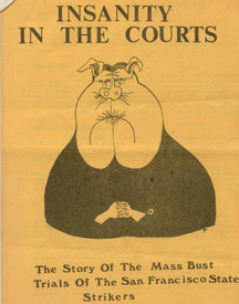 Insanity in the Courts - Mass Arrest Pamphlet
